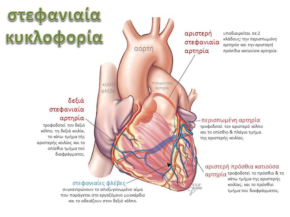 ΚΑΡΔΙΑΓΓΕΙΑΚΕΣ ΠΑΘΗΣΕΙΣ ΚΑΡΔΙΟΠΑΘΕΙΕΣ Συγγενείς & Επίκτητες ΚΑΚΗ στεφανιαία κυκλοφορία συνήθως στις βαλβίδες ιός της ερυθράς περικαρδίτιδεςμυοκαρδίτιδεςενδοκαρδίτιδες ΙΣΧΑΙΜΙΑ του μυοκαρδίου ΕΜΦΡΑΓΜΑ του μυοκαρδίου
