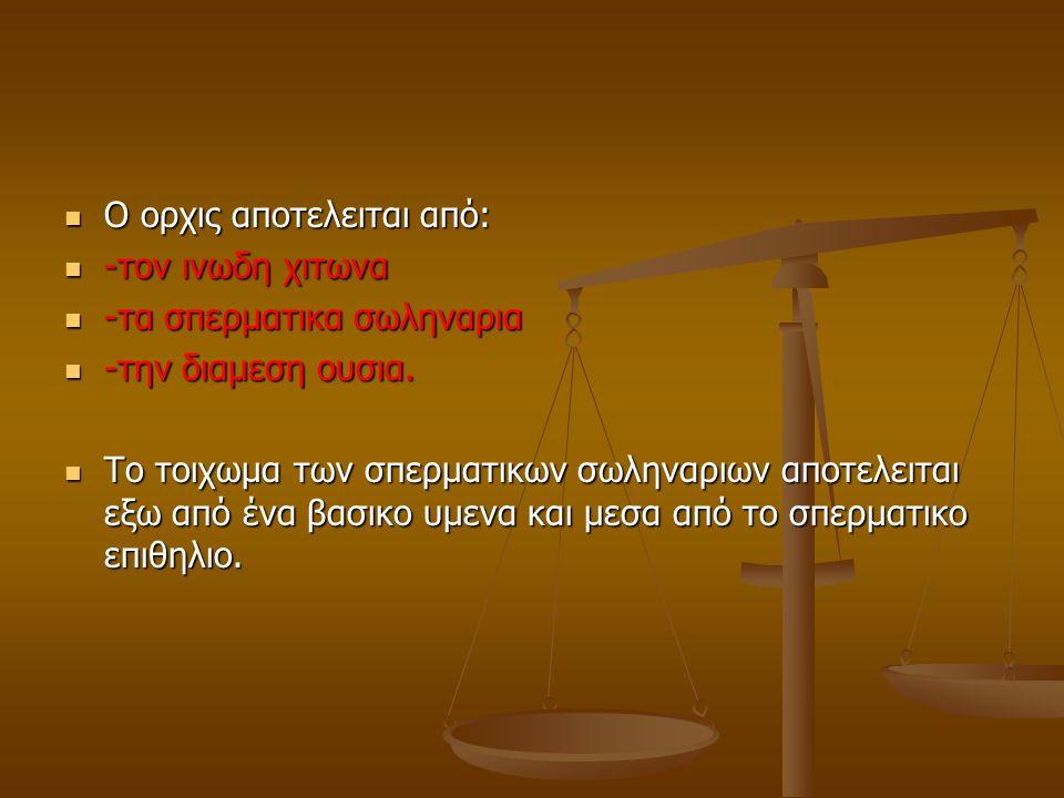 Ο ορχις αποτελειται από: Ο ορχις αποτελειται από: -τον ινωδη χιτωνα -τον ινωδη χιτωνα -τα σπερματικα σωληναρια -τα σπερματικα σωληναρια -την διαμεση ουσια.