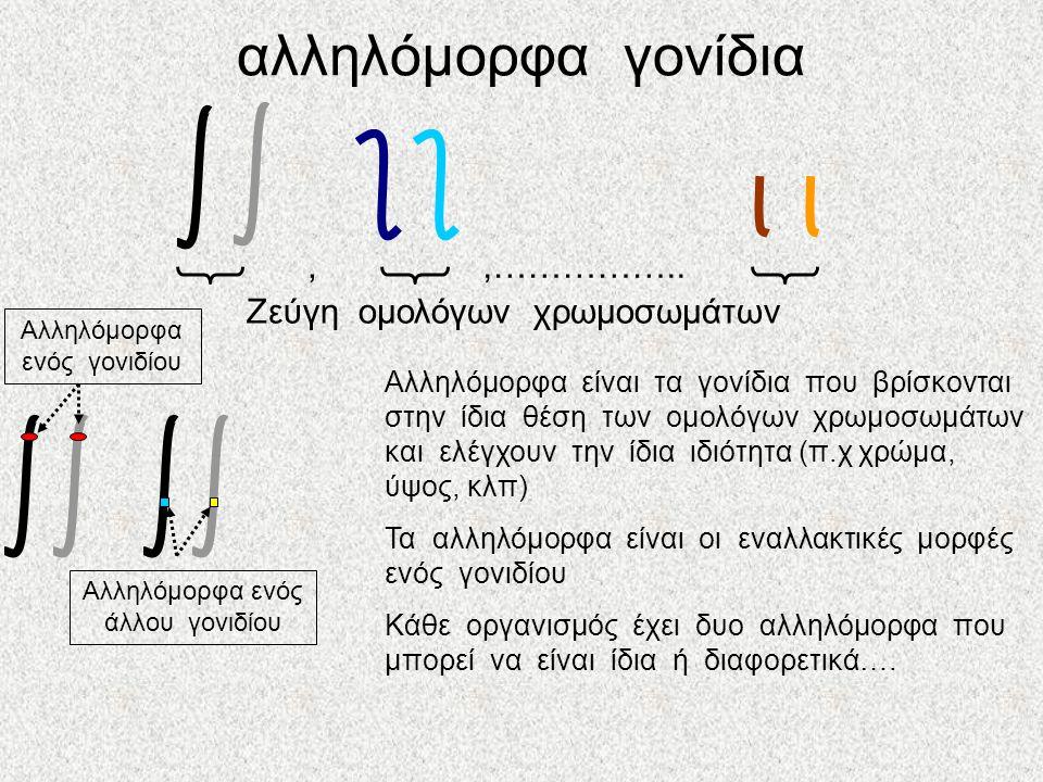 αλληλόμορφα γονίδια,,……………..