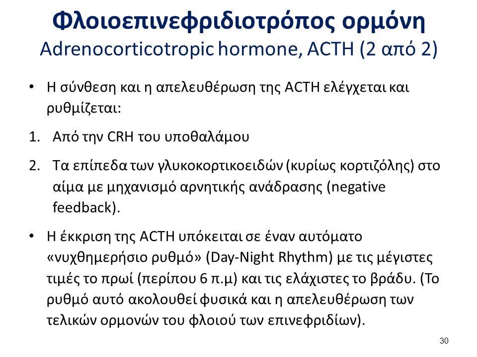 Φλοιοεπινεφριδιοτρόπος ορμόνη Adrenocorticotropic hormone, ACTH (2 από 2) Η σύνθεση και η απελευθέρωση της ACTH ελέγχεται και ρυθμίζεται: 1.Από την CR
