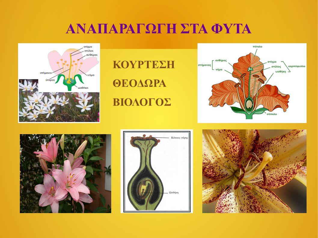 ΤΡΟΠΟΙ ΑΝΑΠΑΡΑΓΩΓΗΣ 1.