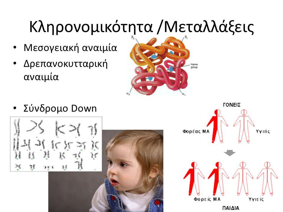 Κληρονομικότητα /Μεταλλάξεις Μεσογειακή αναιμία Δρεπανoκυτταρική αναιμία Σύνδρομο Down