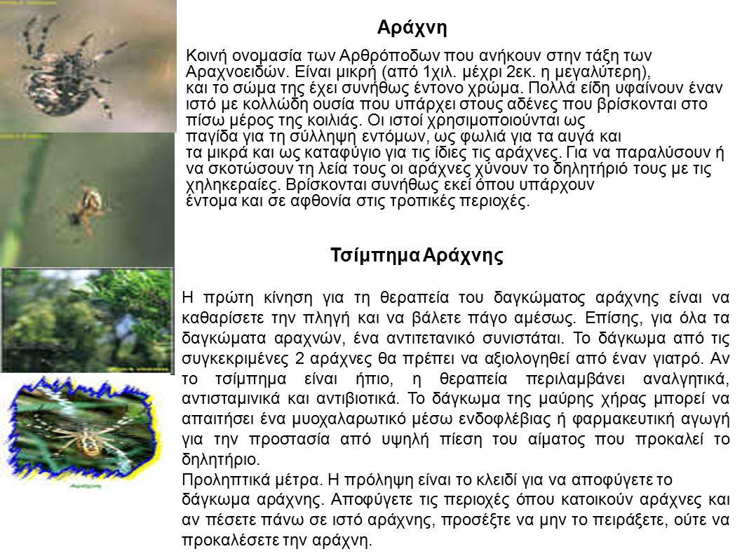 Αράχνη Κοινή ονομασία των Αρθρόποδων που ανήκουν στην τάξη των Αραχνοειδών. Είναι μικρή (από 1χιλ. μέχρι 2εκ. η μεγαλύτερη), και το σώμα της έχει συνή