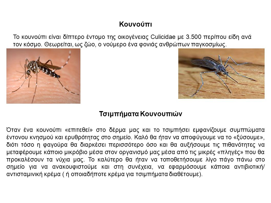 Κουνούπι Το κουνούπι είναι δίπτερο έντομο της οικογένειας Culicidae με 3.500 περίπου είδη ανά τον κόσμο. Θεωρείται, ως ζώο, ο νούμερο ένα φονιάς ανθρώ