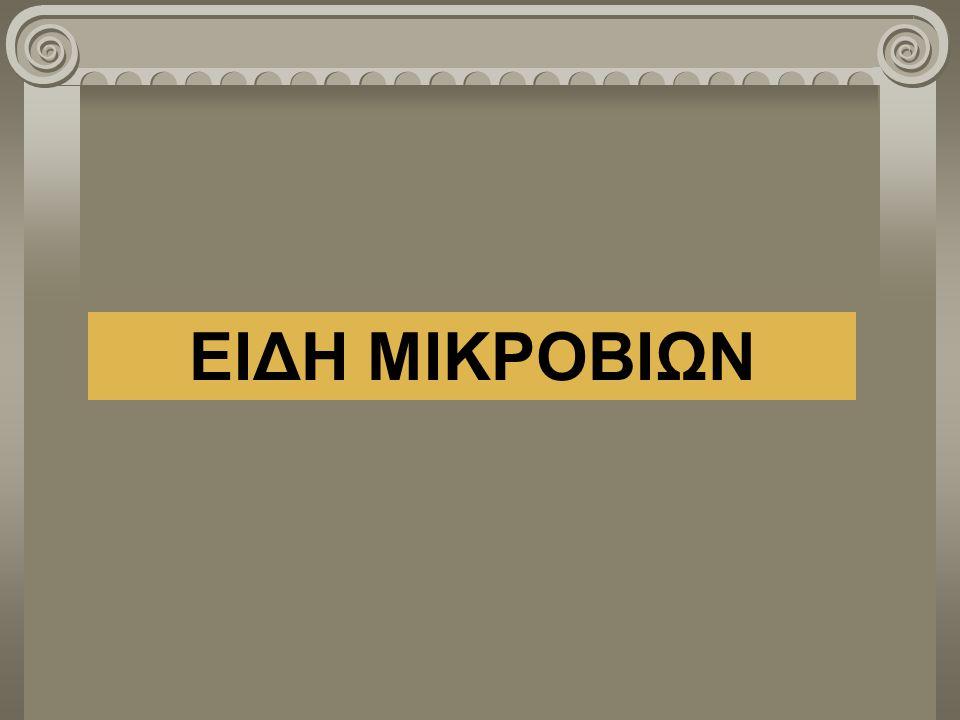 ΕΙΔΗ ΜΙΚΡΟΒΙΩΝ