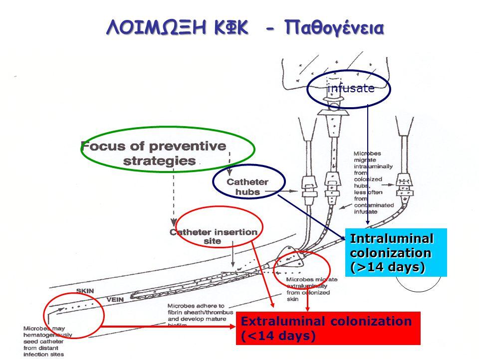 Extraluminal colonization (<14 days) infusate Intraluminal colonization (>14 days) ΛΟΙΜΩΞΗ ΚΦΚ - Παθογένεια