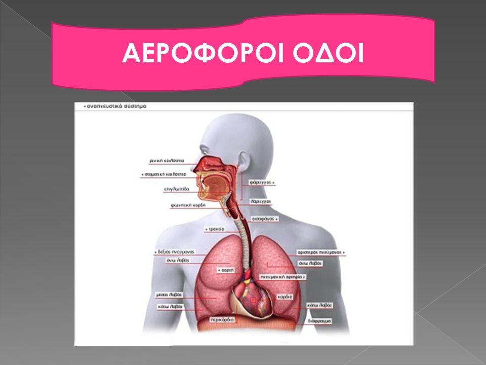 Καλούμε ιατρική βοήθεια, ενώ συνεχίζουμε, μέχρι:  Να πεταχτεί το ξένο σώμα και αποκατασταθεί η κανονική αναπνοή  Ο πάσχων αρχίσει να βήχει δυνατά