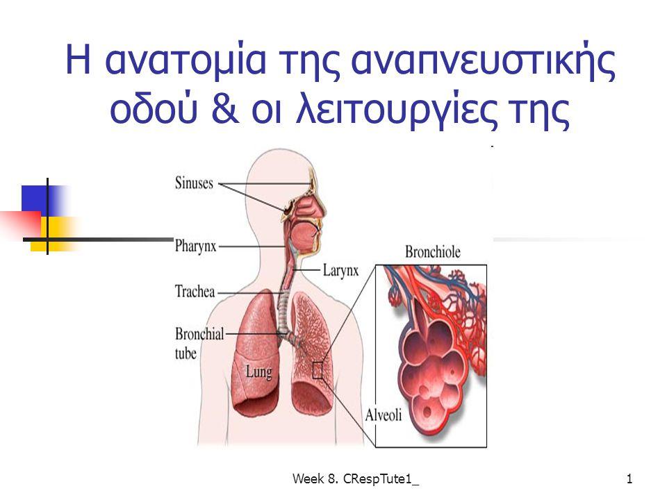 Λειτουργική Ανατομική του Αναπνευστικού Συστήματος Ανώτερη και κατώτερη αναπνευστική οδός Ανατομία των πνευμόνων Week 8.