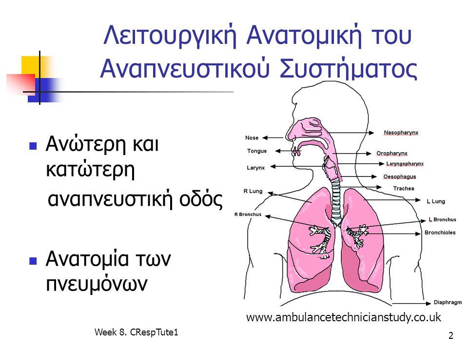 Λειτουργική Ανατομική του Αναπνευστικού Συστήματος Ανώτερη και κατώτερη αναπνευστική οδός Ανατομία των πνευμόνων Week 8. CRespTute1 2 www.ambulancetec