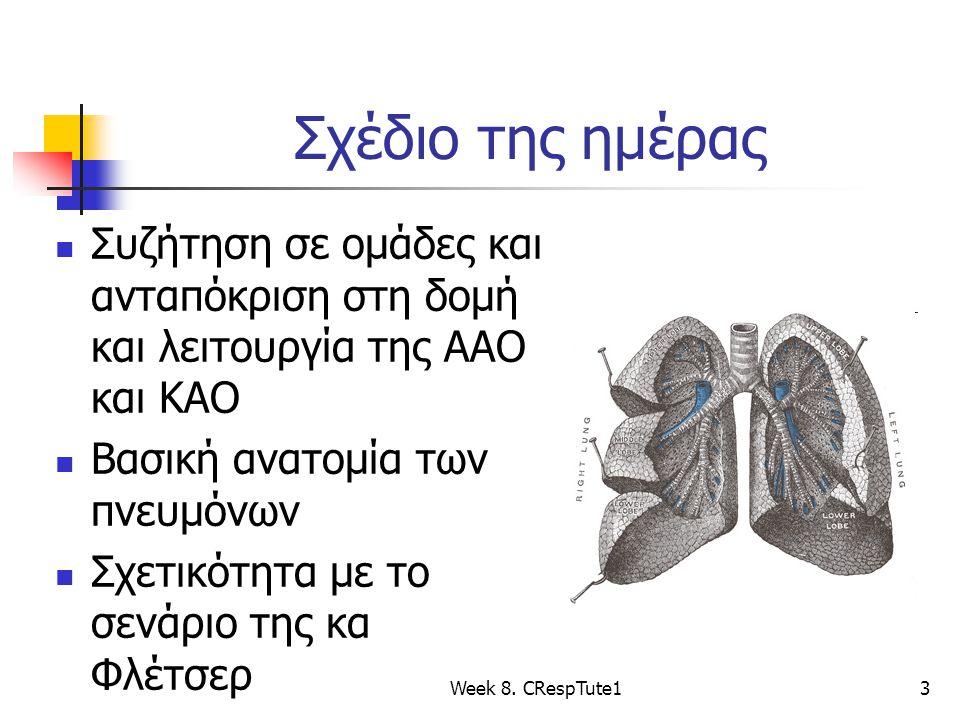 Σχέδιο της ημέρας Συζήτηση σε ομάδες και ανταπόκριση στη δομή και λειτουργία της ΑΑΟ και ΚΑΟ Βασική ανατομία των πνευμόνων Σχετικότητα με το σενάριο της κα Φλέτσερ Week 8.