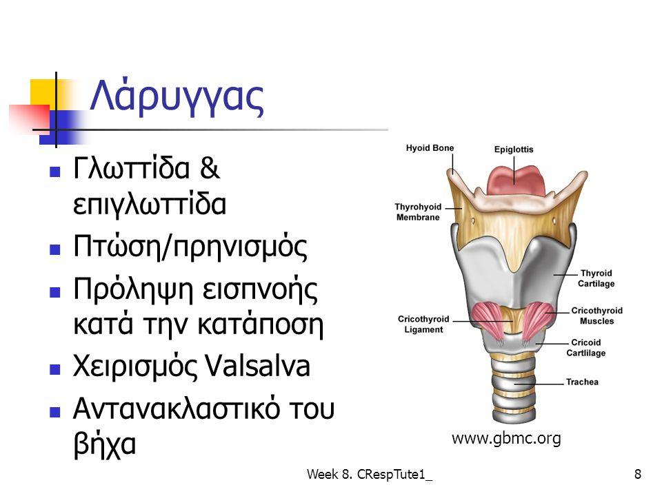 Λάρυγγας Γλωττίδα & επιγλωττίδα Πτώση/πρηνισμός Πρόληψη εισπνοής κατά την κατάποση Χειρισμός Valsalva Αντανακλαστικό του βήχα Week 8.