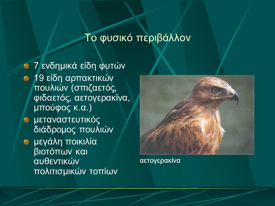 Το φυσικό περιβάλλον 7 ενδημικά είδη φυτών 19 είδη αρπακτικών πουλιών (σπιζαετός, φιδαετός, αετογερακίνα, μπούφος κ.α.) μεταναστευτικός διάδρομος πουλ