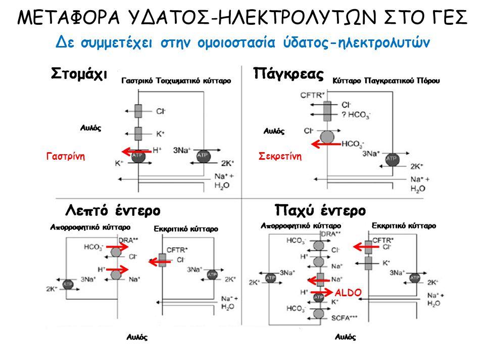 ΘΕΡΑΠΕΙΑ ΔΙΟΡΘΩΣΗ ΥΠΟΚΕΙΜΕΝΟΥ ΝΟΣΗΜΑΤΟΣ Φάση δημιουργίας μεταβολικής αλκάλωσης: Απώλεια γαστρικού οξέος: αντιεμετικά, αφαίρεση ρινογαστρικού καθετήρα Γαστρική έκκριση Η + : αναστολείς Η 2, αναστολείς αντλίας Η + ΣΖ-Ε, ΛΑ, ΠΣ: Χειρουργική αντιμετώπιση Φάση συντήρησης μεταβολικής αλκάλωσης: Υποογκαιμία: iv ΝaCl 0,9% ( V U + V ΑΠΩΛΕΙΕΣ + 100 ml/h) Υποκαλιαιμία: iv KCl 10-20 mEq x 2-4/d ΟΧΙ κιτρικό ή οξικό κάλιο λόγω γένεσης ΗCO 3 - Υποχλωραιμία: iv NaCl, iv KCl ΜΕΤΑΒΟΛΙΚΗ ΑΛΚΑΛΩΣΗ ΣΕ ΔΙΑΤΑΡΑΧΕΣ ΓΕΣ