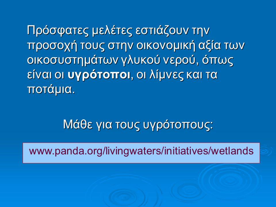 Πρόσφατες μελέτες εστιάζουν την προσοχή τους στην οικονομική αξία των οικοσυστημάτων γλυκού νερού, όπως είναι οι υγρότοποι, οι λίμνες και τα ποτάμια.