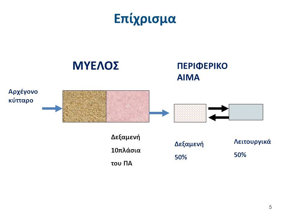 Επίχρισμα Αρχέγονο κύτταρο ΜΥΕΛΟΣ ΠΕΡΙΦΕΡΙΚΟ ΑΙΜΑ Δεξαμενή 50% Λειτουργικά 50% Δεξαμενή 10πλάσια του ΠΑ 5