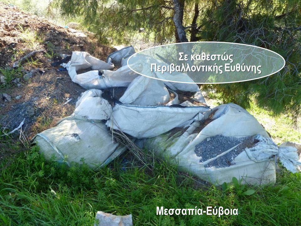 Σε καθεστώς Περιβαλλοντικής Ευθύνης Μεσσαπία-Εύβοια