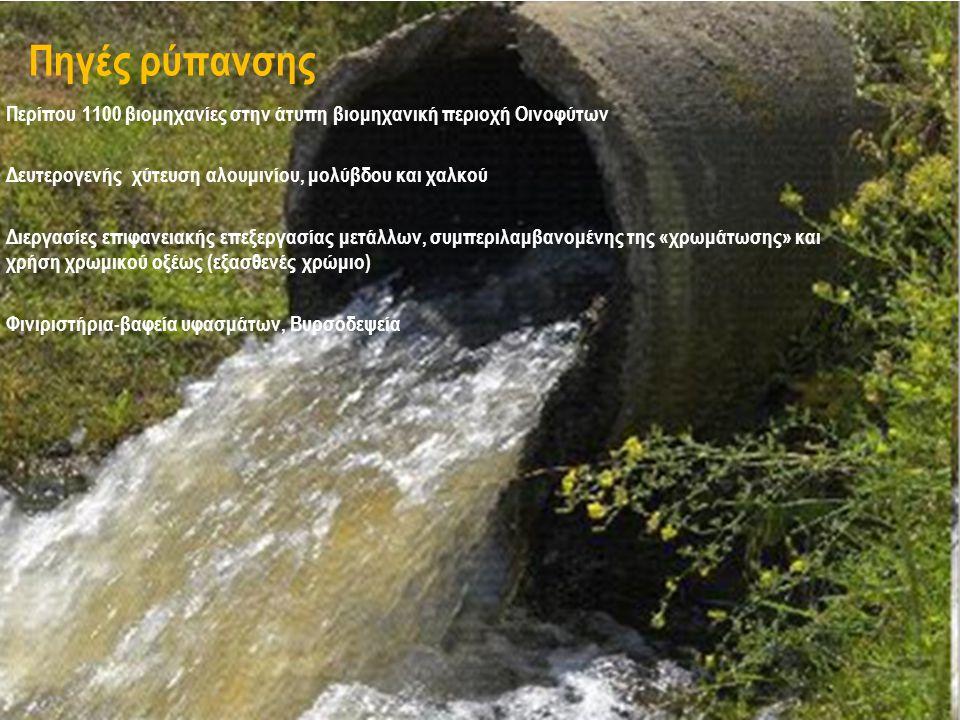 Περίπου 1100 βιομηχανίες στην άτυπη βιομηχανική περιοχή Οινοφύτων Δευτερογενής χύτευση αλουμινίου, μολύβδου και χαλκού Διεργασίες επιφανειακής επεξεργασίας μετάλλων, συμπεριλαμβανομένης της «χρωμάτωσης» και χρήση χρωμικού οξέως (εξασθενές χρώμιο) Φινιριστήρια-βαφεία υφασμάτων, Βυρσοδεψεία Πηγές ρύπανσης
