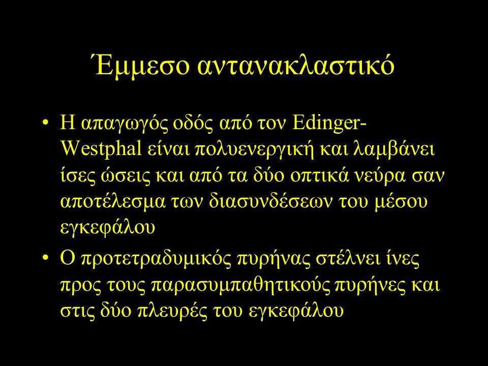 Έμμεσο αντανακλαστικό Η απαγωγός οδός από τον Edinger- Westphal είναι πολυενεργική και λαμβάνει ίσες ώσεις και από τα δύο οπτικά νεύρα σαν αποτέλεσμα