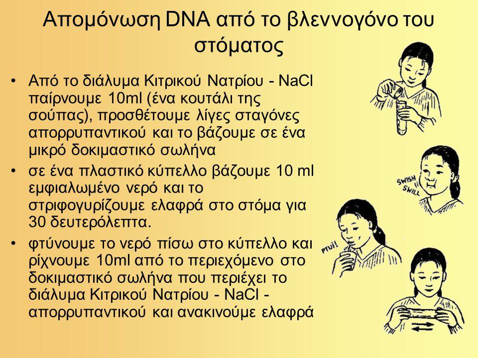 Απομόνωση DNA από το βλεννογόνο του στόματος Από το διάλυμα Κιτρικού Νατρίου - NaCl παίρνουμε 10ml (ένα κουτάλι της σούπας), προσθέτουμε λίγες σταγόνε