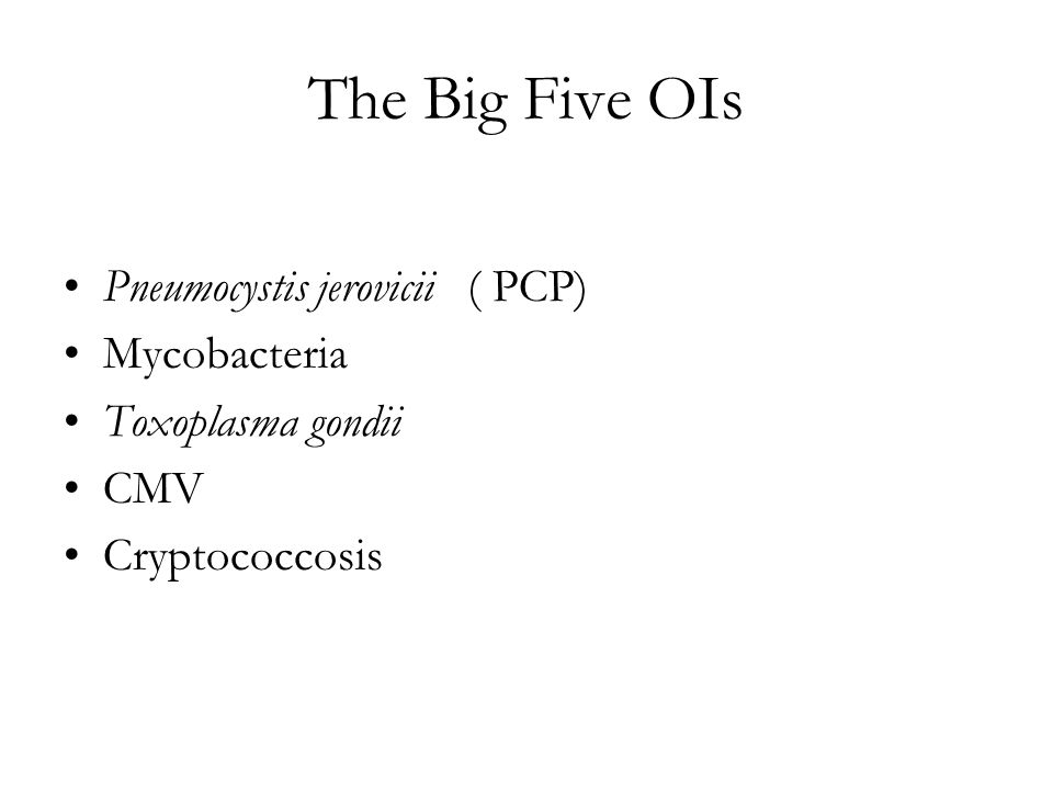 The Big Five OIs Pneumocystis jerovicii ( PCP) Mycobacteria Toxoplasma gondii CMV Cryptococcosis