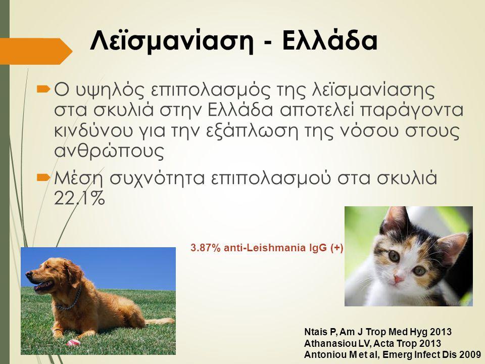 Λεϊσμανίαση - Ελλάδα  Ο υψηλός επιπολασμός της λεϊσμανίασης στα σκυλιά στην Ελλάδα αποτελεί παράγοντα κινδύνου για την εξάπλωση της νόσου στους ανθρώ