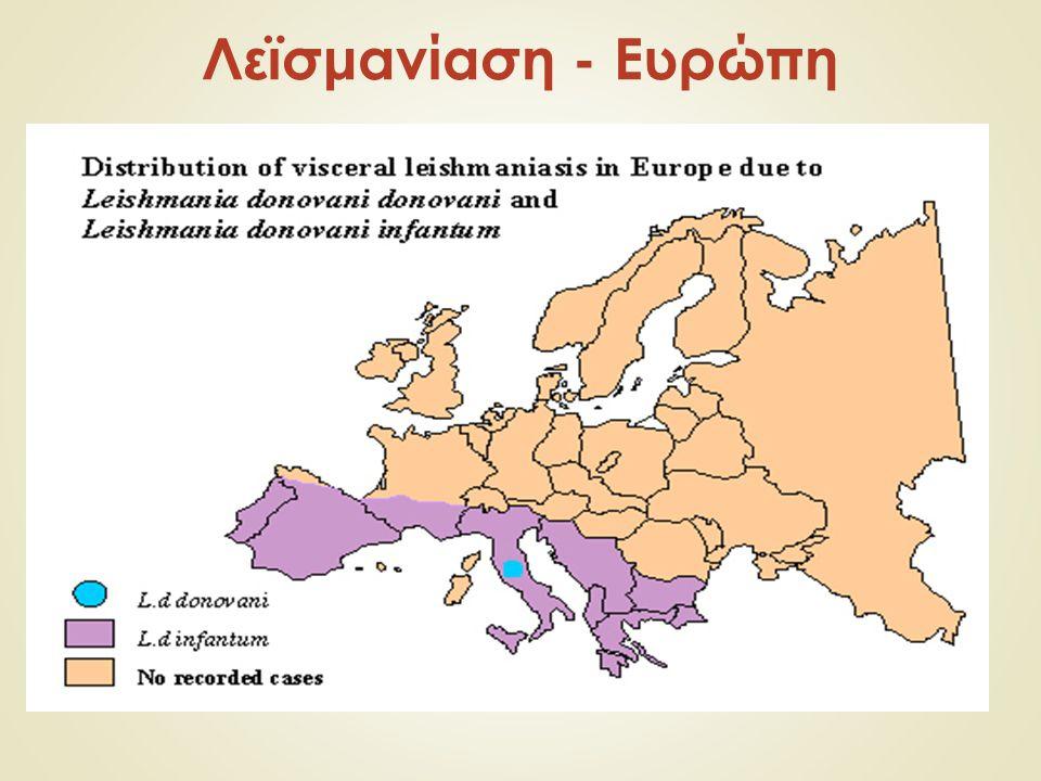 Λεϊσμανίαση - Ευρώπη