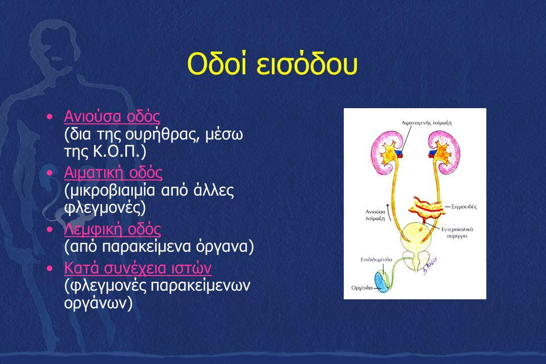 Οδοί εισόδου Ανιούσα οδός (δια της ουρήθρας, μέσω της Κ.Ο.Π.) Αιματική οδός (μικροβιαιμία από άλλες φλεγμονές) Λεμφική οδός (από παρακείμενα όργανα) Κ
