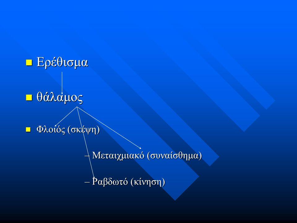 Ερέθισμα Ερέθισμα θάλαμος θάλαμος Φλοιός (σκέψη) Φλοιός (σκέψη) –Μεταιχμιακό (συναίσθημα) –Ραβδωτό (κίνηση)