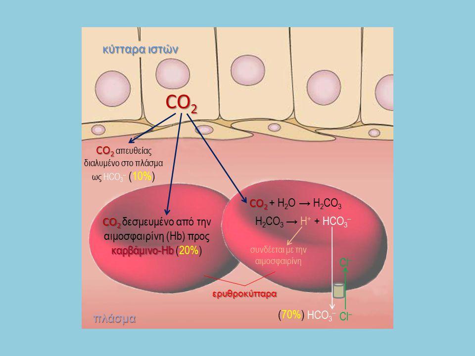 CO 2 CO 2 απευθείας διαλυμένο στο πλάσμα ως HCO 3 – (10%) CO 2 CO 2 καρβάμινο-Hb CO 2 δεσμευμένο από την αιμοσφαιρίνη (Hb) προς καρβάμινο-Hb (20%) CO