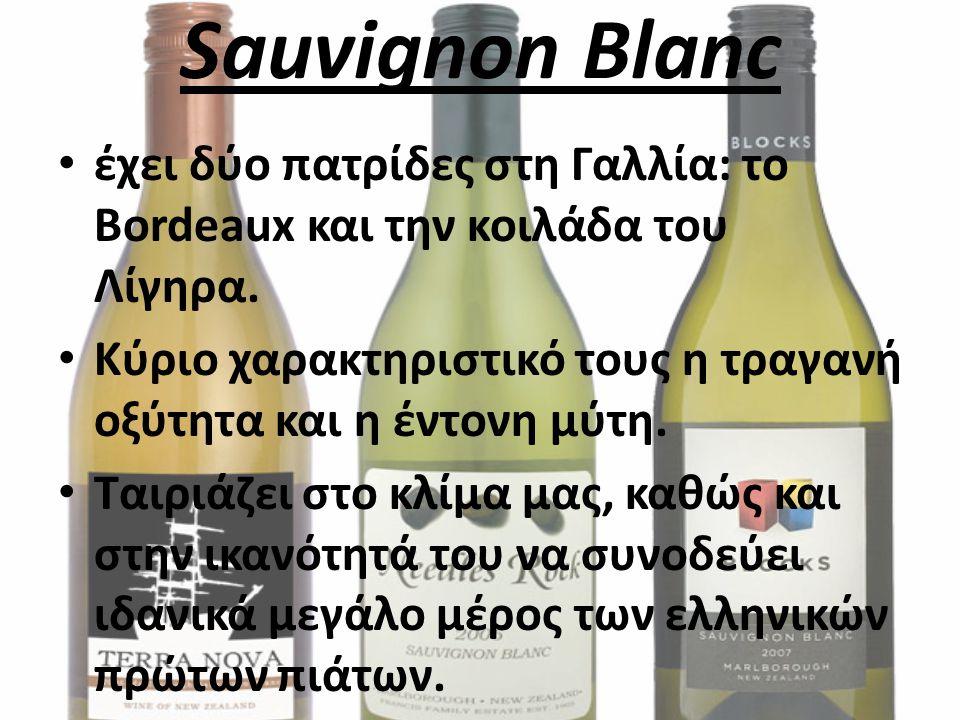 Sauvignon Blanc έχει δύο πατρίδες στη Γαλλία: το Bordeaux και την κοιλάδα του Λίγηρα. Κύριο χαρακτηριστικό τους η τραγανή οξύτητα και η έντονη μύτη. Τ