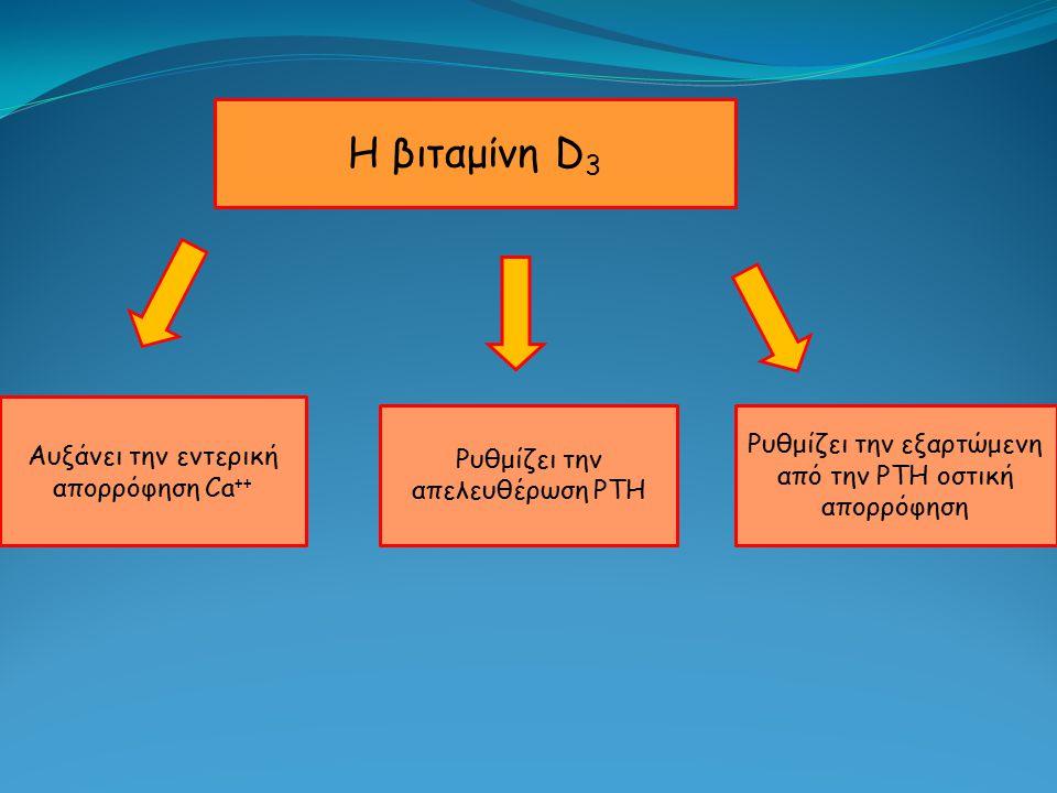 Η βιταμίνη D 3 Αυξάνει την εντερική απορρόφηση Ca ++ Ρυθμίζει την απελευθέρωση PTH Ρυθμίζει την εξαρτώμενη από την PTH οστική απορρόφηση