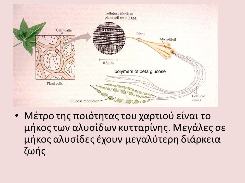 Βασική δομή του χαρτιού Επαναλαμβανόμενες αλυσίδες κυτταρίνης (ίνες) ενωμένες με ίνες λιγνίνης Η κυτταρίνη είναι πολυμερές της γλυκόζης Σύνδεση των μονομερών γλυκόζης με β-1,4 γλυκοζιτικό δεσμό Μέτρο της ποιότητας του χαρτιού είναι το μήκος των αλυσίδων κυτταρίνης.