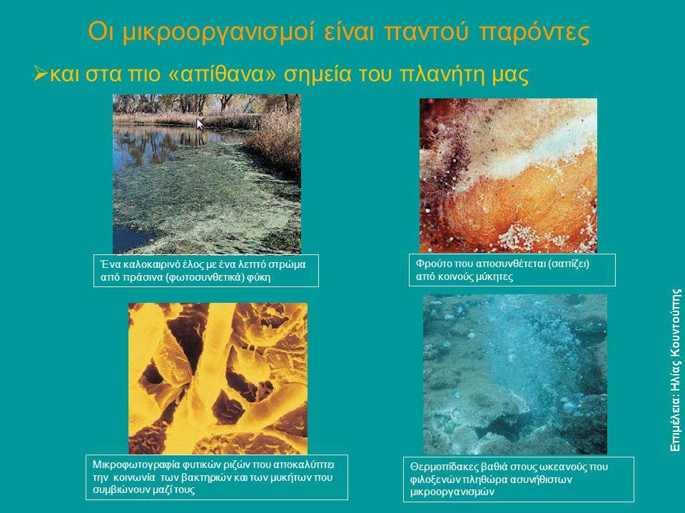 Οι μικροοργανισμοί είναι παντού παρόντες  αλλά δεν προκαλούν μόνο ασθένειες, αντιθέτως… Αέροφωτογραφία ορυχείου χαλκού.