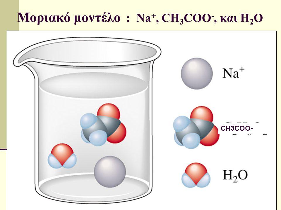 Μοριακό μοντέλο : Na +, CH 3 COO -, και H 2 O CH3COO-