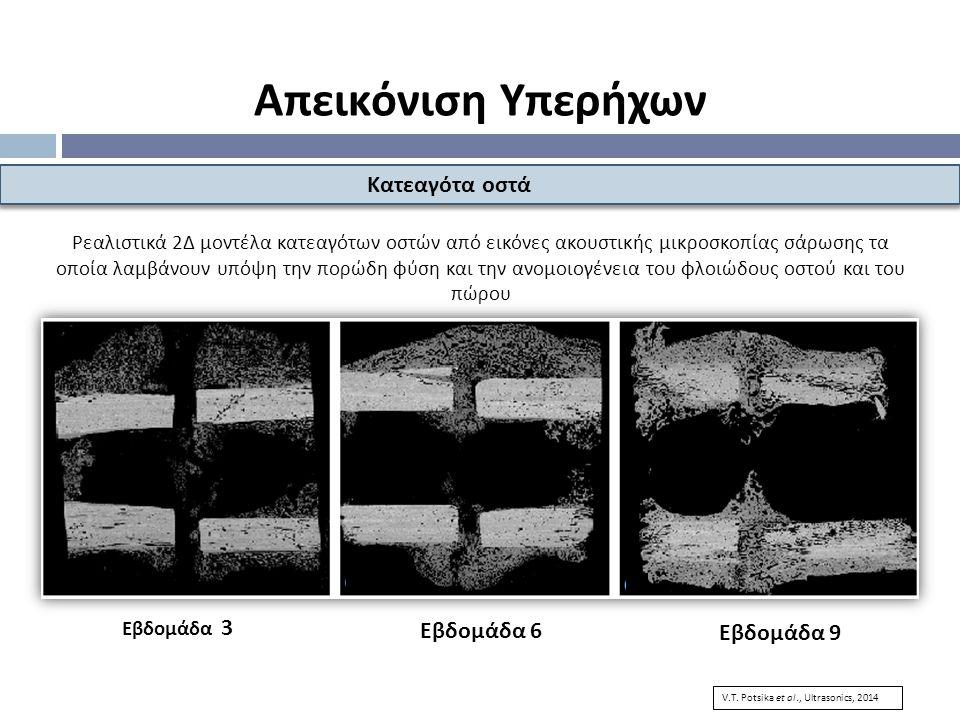 Ρεαλιστικά 2Δ μοντέλα κατεαγότων οστών από εικόνες ακουστικής μικροσκοπίας σάρωσης τα οποία λαμβάνουν υπόψη την πορώδη φύση και την ανομοιογένεια του