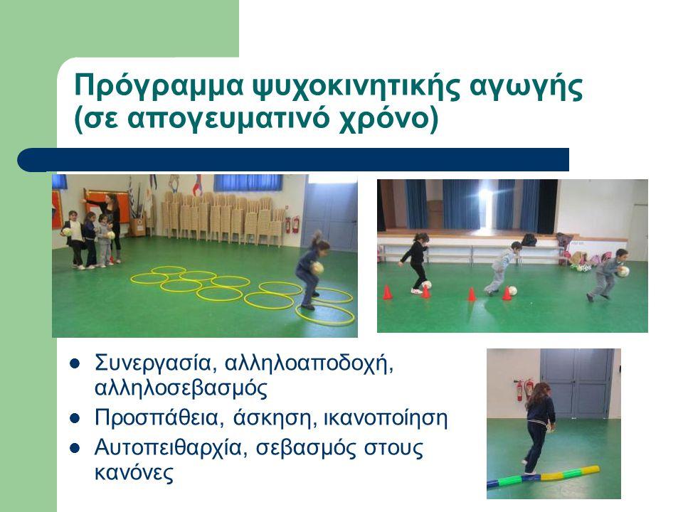 Συνεργασία, αλληλοαποδοχή, αλληλοσεβασμός Προσπάθεια, άσκηση, ικανοποίηση Αυτοπειθαρχία, σεβασμός στους κανόνες Πρόγραμμα ψυχοκινητικής αγωγής (σε απογευματινό χρόνο)