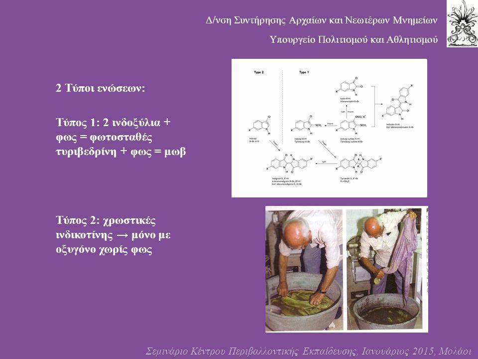 2 Τύποι ενώσεων: Τύπος 1: 2 ινδοξύλια + φως = φωτοσταθές τυριβεδρίνη + φως = μωβ Τύπος 2: χρωστικές ινδικοτίνης → μόνο με οξυγόνο χωρίς φως Σεμινάριο