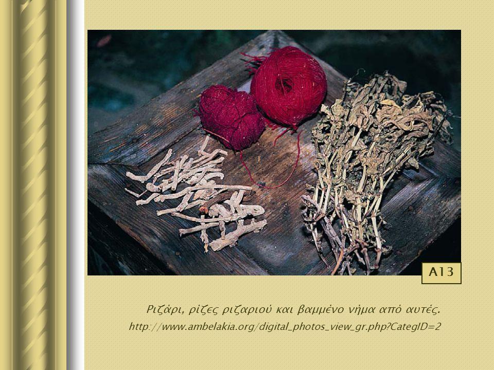 Ριζάρι, ρίζες ριζαριού και βαμμένο νήμα από αυτές. http://www.ambelakia.org/digital_photos_view_gr.php?CategID=2 Α13