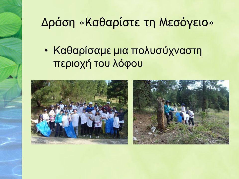 Δράση «Καθαρίστε τη Μεσόγειο» Καθαρίσαμε μια πολυσύχναστη περιοχή του λόφου