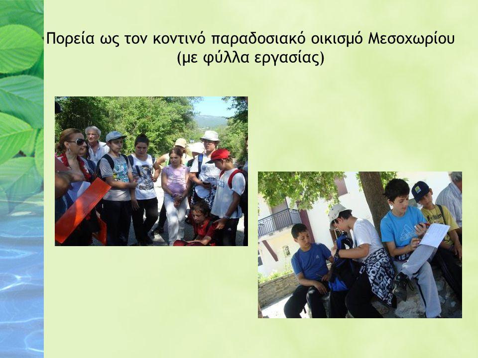 Πορεία ως τον κοντινό παραδοσιακό οικισμό Μεσοχωρίου (με φύλλα εργασίας)