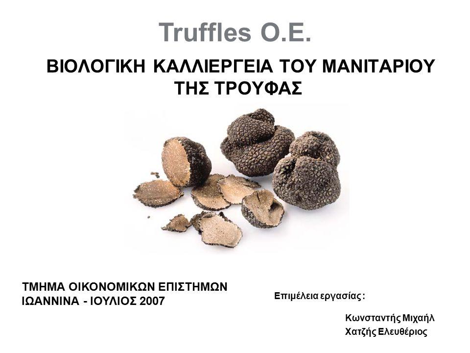 Στόχοι της επιχείρησης Κάλυψη των λειτουργικών αναγκών Κατάλληλη συντήρηση του προϊόντος ανάλογα με την εποχή Η διασφάλιση υψηλής ποιότητας της τρούφας Προβολή και διανομή του προϊόντος σε όλα τα μεγάλα αστικά κέντρα της εγχώριας αγοράς Εξαγωγή σε ευρωπαϊκές χώρες που έχουν μεγάλη ζήτηση τρούφας Συμμετοχή σε δημοπρασίες ανά τακτά χρονικά διαστήματα Σύναψη εμπορικών σχέσεων με καταστήματα βιολογικών προϊόντων Γνωστοποίηση της τρούφας στην ελληνική κουζίνα Σύναψη συνεργασίας με καλλιεργητές τρούφας Καλλιέργεια και λευκής τρούφας Επέκταση της επιχείρησης