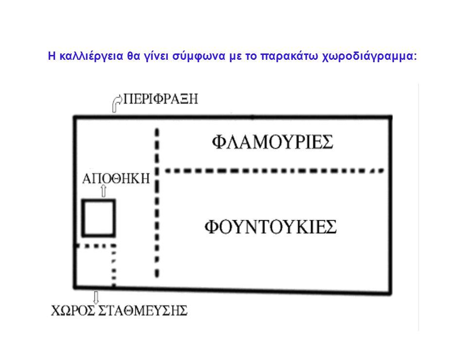 Η καλλιέργεια θα γίνει σύμφωνα με το παρακάτω χωροδιάγραμμα: