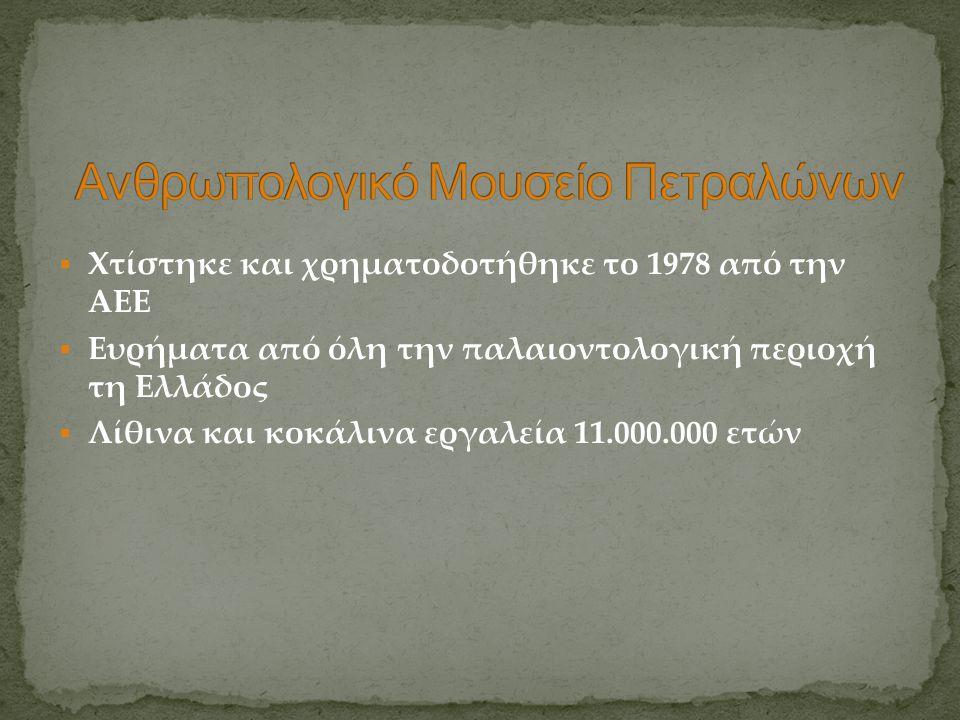  Χτίστηκε και χρηματοδοτήθηκε το 1978 από την ΑΕΕ  Ευρήματα από όλη την παλαιοντολογική περιοχή τη Ελλάδος  Λίθινα και κοκάλινα εργαλεία 11.000.000