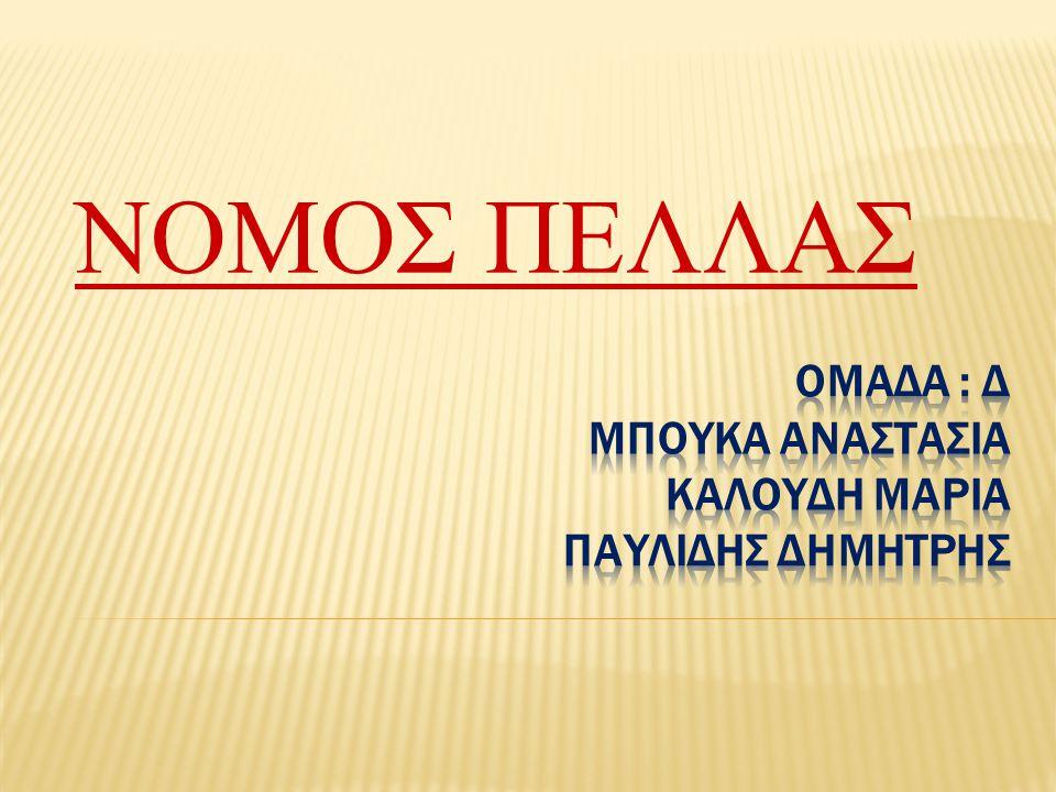  Η Πέλλα είναι νομός της Ελλάδας που βρίσκεται στη Μακεδονία και ανήκει στην περιφέρεια Κεντρικής Μακεδονίας..