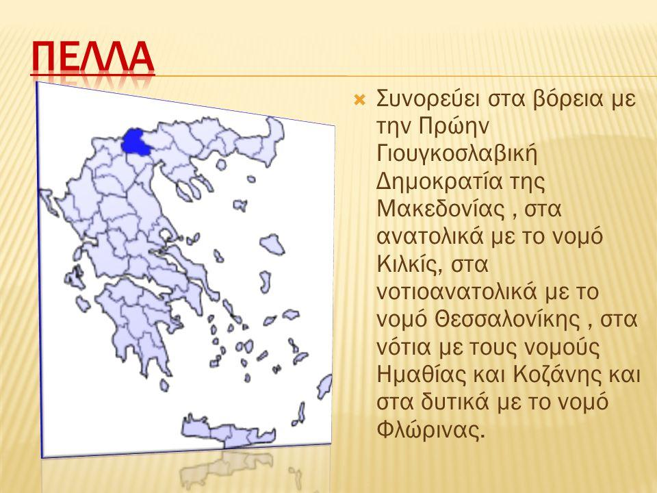  Συνορεύει στα βόρεια με την Πρώην Γιουγκοσλαβική Δημοκρατία της Μακεδονίας, στα ανατολικά με το νομό Κιλκίς, στα νοτιοανατολικά με το νομό Θεσσαλονί