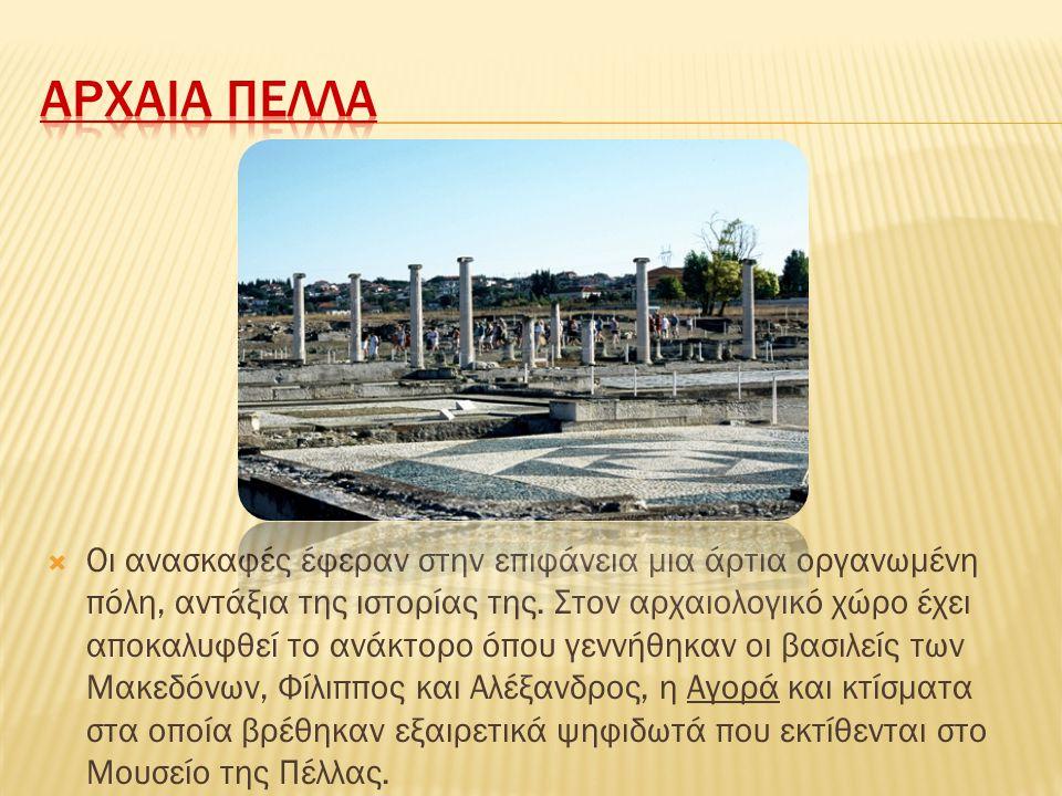  Οι ανασκαφές έφεραν στην επιφάνεια μια άρτια οργανωμένη πόλη, αντάξια της ιστορίας της. Στον αρχαιολογικό χώρο έχει αποκαλυφθεί το ανάκτορο όπου γεν