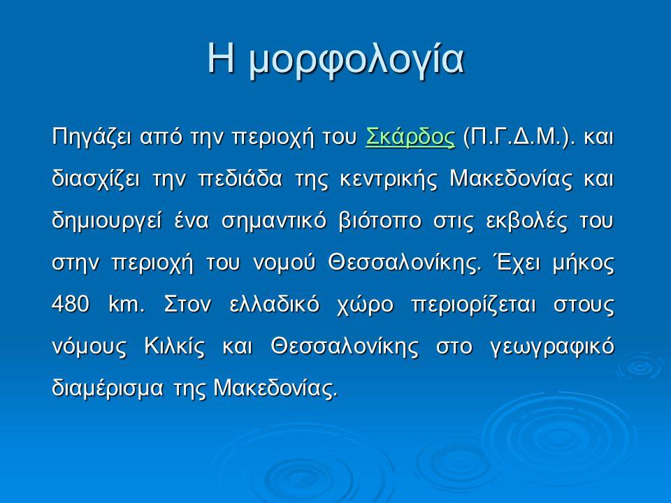 Πηγάζει από την περιοχή του Σκάρδος (Π.Γ.Δ.Μ.). και διασχίζει την πεδιάδα της κεντρικής Μακεδονίας και δημιουργεί ένα σημαντικό βιότοπο στις εκβολές τ