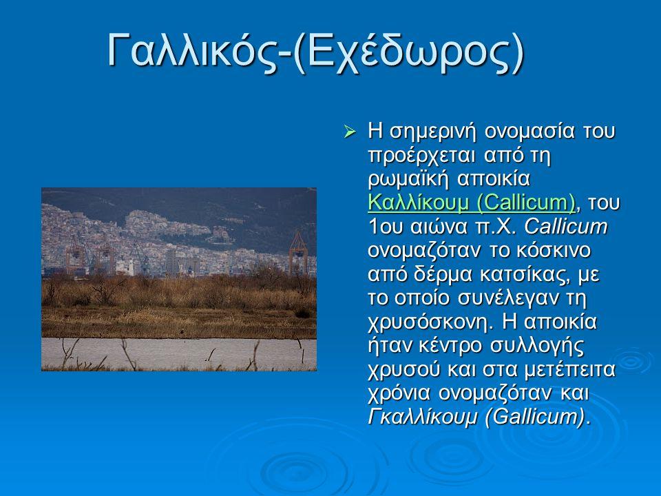 Μορφολογία  Ο Γαλλικός ποταμός, ο αρχαίος Εχέδωρος, είναι ποταμός της Κεντρικής Μακεδονίας.