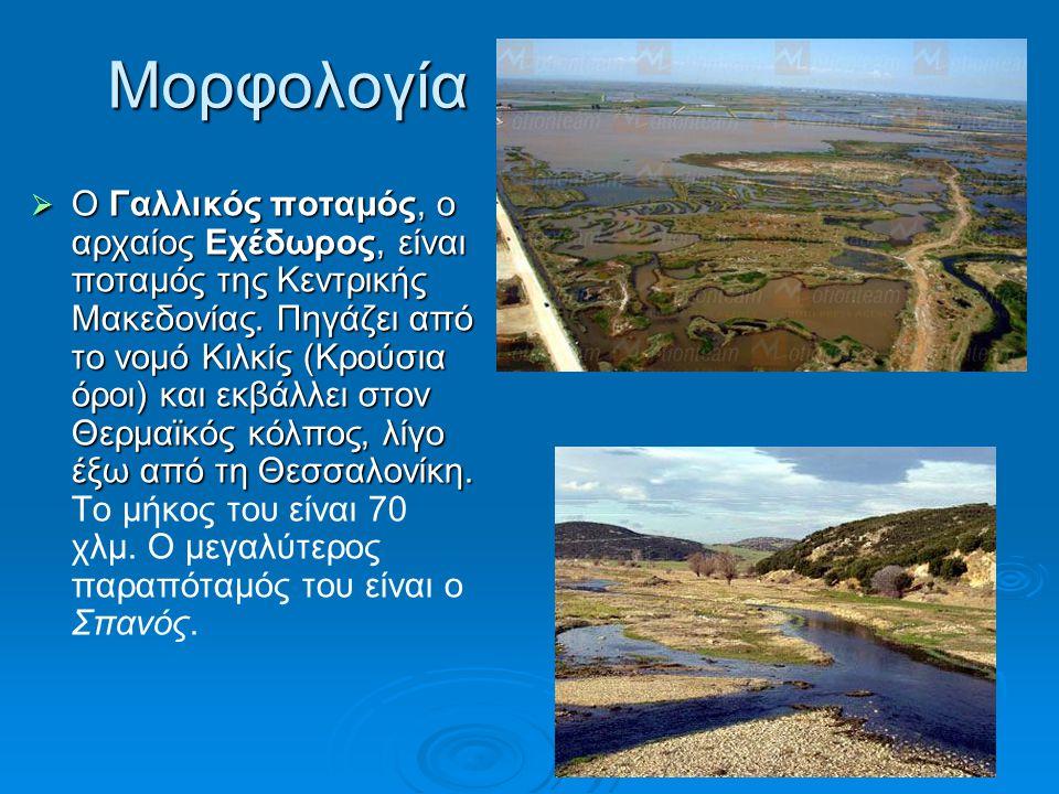 Μορφολογία  Ο Γαλλικός ποταμός, ο αρχαίος Εχέδωρος, είναι ποταμός της Κεντρικής Μακεδονίας. Πηγάζει από το νομό Κιλκίς (Κρούσια όροι) και εκβάλλει στ