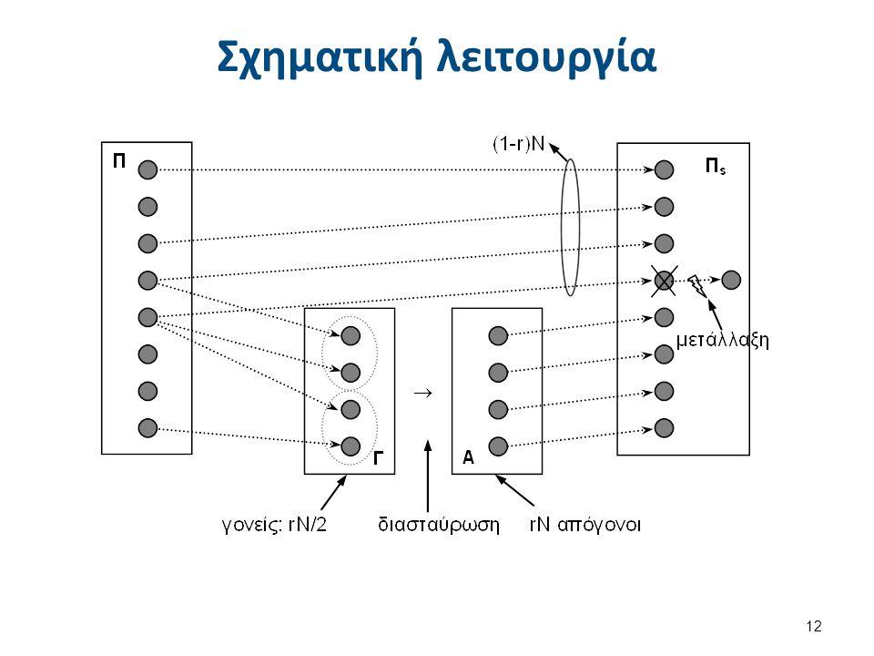 Σχηματική λειτουργία 12